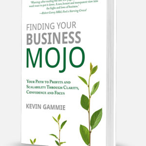finding-your-business-mojo-book